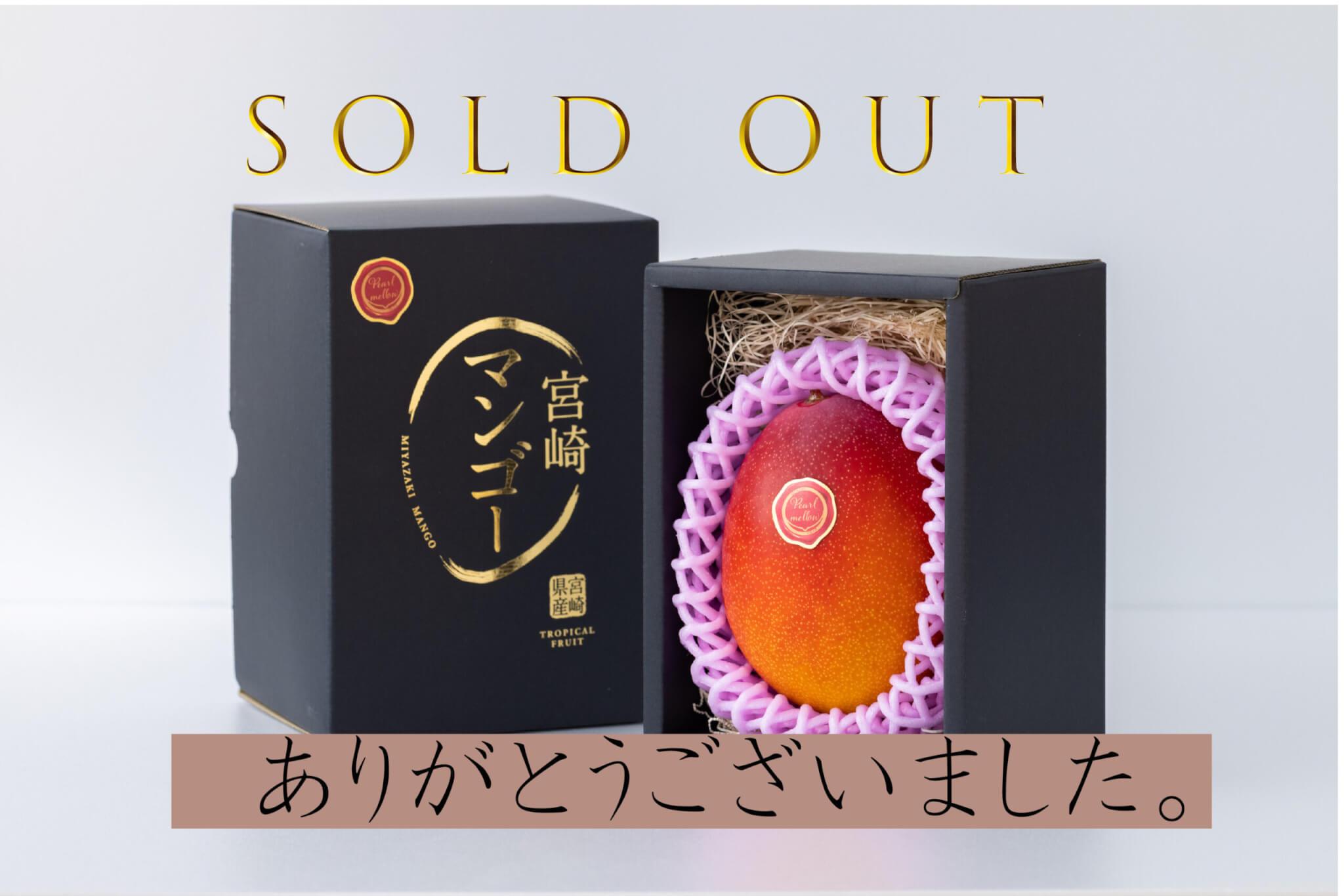 大玉パルメロ 600g以上 1玉入り【SOLD OUT】
